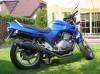 Veicoli Terra Moto moto honda ottimo stato, causa